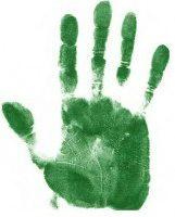 cropped-cropped-greenhand-e13654930938981.jpg
